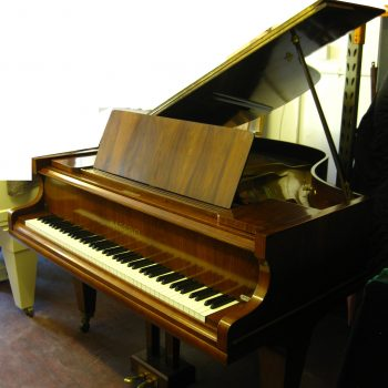 Hagspiel Baby Grand Piano